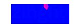 zigfit logo